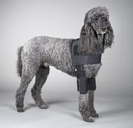 Standard Length Adjustable DogLeggs for elbow hygromas and callouses