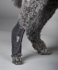 Canine Tarsal Support