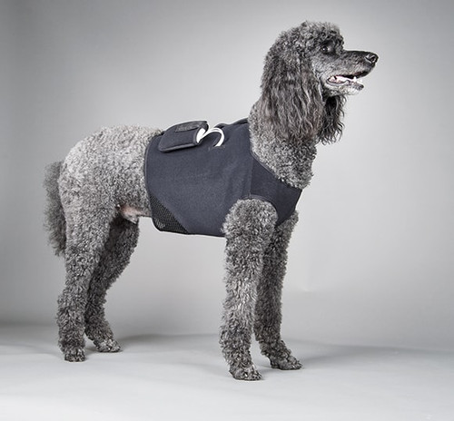 Canine Cardiac Monitoring VEST w/Device Case
