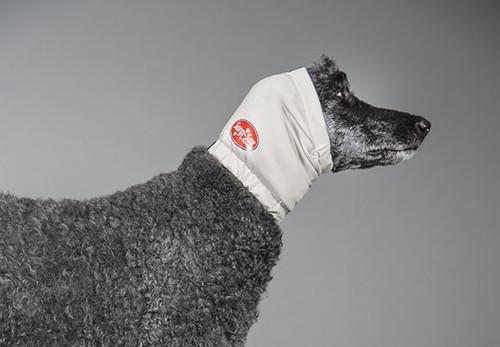 dog Aural Compression Bandage for Ear Hematoma