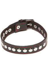 A sassy little collar with rivets. Black with red stitching and buckle closure.