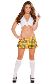 After School Vixen school girl costume includes short sleeve tie-front crop top and plaid pleated mini skirt. Two piece set.
