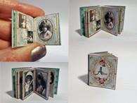 Victorian Girl/child/female photograph Album No6