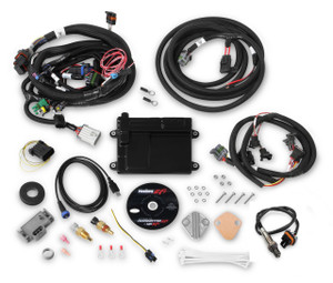 Holley EFI HP ECU AND HARNESS, Universal Ford V8 Multi-Point