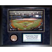 Tampa Bay Rays Tropicana Field 11x14 Mini Dirt Collage