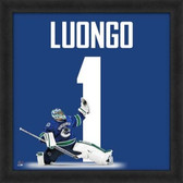 Roberto Luongo Vancouver Canucks 20x20 Framed Uniframe Jersey Photo