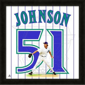 Randy Johnson Arizona Diamondbacks 20x20 Framed Uniframe Jersey Photo
