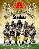 PITTSBURGH STEELERS 2005 AFC CHAMPIONS 8x10 TEAM PHOTO
