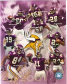Minnesota Vikings Team 8x10 Photo