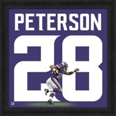 Minnesota Vikings Adrian Peterson 20X20 Framed Uniframe Jersey Photo