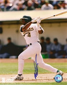 Miguel Tejada Oakland Athletics Signed 8x10 Photo #5