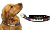Denver Broncos Dog Collar - Medium