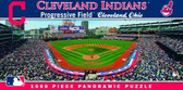 Cleveland Indians Panoramic Stadium Puzzle