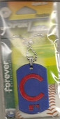 Chicago Cubs Dog Tag Necklace