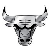 Chicago Bulls Silver Auto Emblem