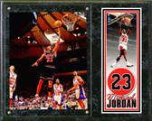 "Chicago Bulls Michael Jordan 15""x12"" Plaque # 2"