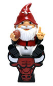 Chicago Bulls Gnome On Team Logo