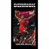 Chicago Bulls Derrick Rose Player Profile Wall Art 9.5x19 Framed Photo