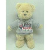 Boston Red Sox 2007 World Series Champs Hoody Bear