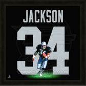 Bo Jackson Oakland Raiders 20x20 Framed Uniframe Jersey Photo