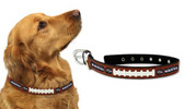 Baltimore Ravens Dog Collar - Medium