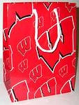 Wisconsin Badgers Gift Bag