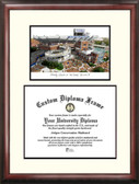 University of Florida, The Swamp Scholar Framed Lithograph with Diploma