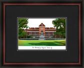 University of Arizona Academic Framed Lithograph