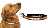 Texas Longhorns Dog Collar - Medium