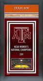 Texas A&M Aggies Framed Championship Banner