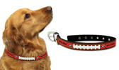 Georgia Bulldogs Dog Collar - Large