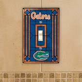 Florida Gators Art Glass Switch Cover