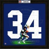 Bo Jackson Auburn Tigers 20x20 Framed Uniframe Jersey Photo