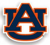 "Auburn Tigers 12"" Car Magnet"