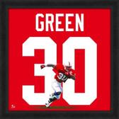 Nebraska Cornhuskers Ahman Green 20X20 Framed Uniframe Jersey Photo