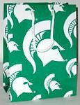 Michigan State Spartans Gift Bag