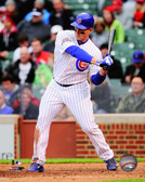 Chicago Cubs Anthony Rizzo 16x20 Stretched Canvas