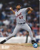 Jose Lima Detroit Tigers 8x10 Photo