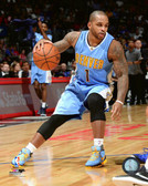 Denver Nuggets Jameer Nelson 20x24 Stretched Canvas