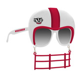 Wisconsin Badgers  Novelty Sunglasses