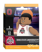Ohio State Buckeyes Campus Collection
