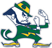 Notre Dame Fighting Irish Vinyl Magnet