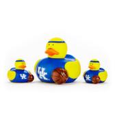 Kentucky Wildcats 3-Pack All Star Ducks