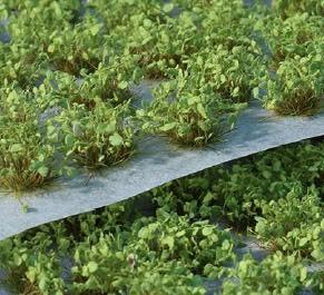 Gamers Grass - Green Shrub 6mm