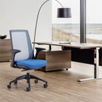 Office Chairs for Back Health