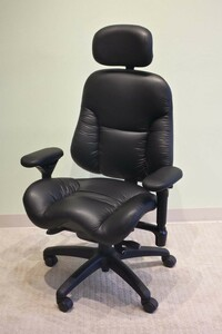BodyBilt 3500 Executive High Back Leather Chair by ErgoGenesis