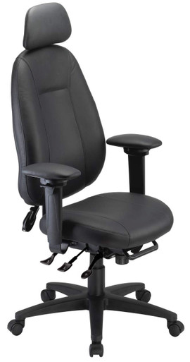ergoCentric eCentric High Back Executive Chair with Headrest