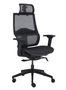 Bruno Ergonomic High Back Mesh Task Chair with Headrest , Black