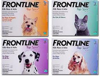 Frontline Spot-On 6-Pack