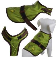 Avant Garde Harness- Green Day